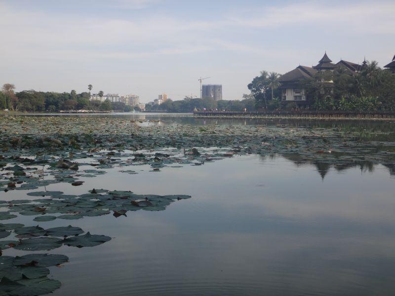 Im Kandawgyi Park